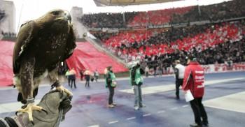 Der Anhang der Eintracht sorgte für eine einmalige Atmosphäre in Berlin.
