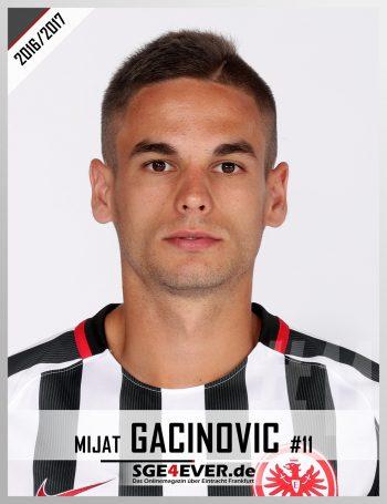 11-gacinovic